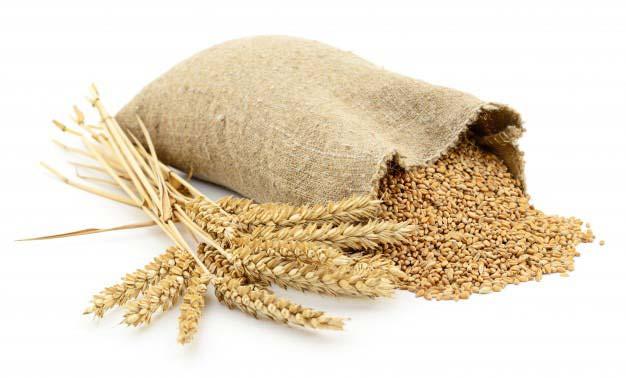 小麦粉中毒!?